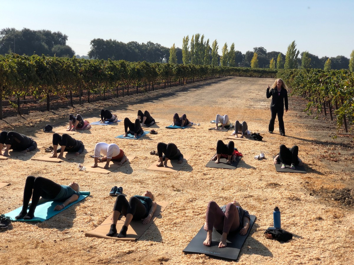 Picture of Pilates in the Vineyard led by Nancy Tenoglio